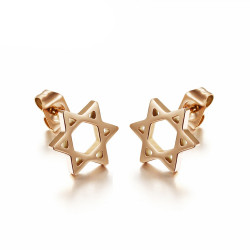BOF0087 BOBIJOO JEWELRY Earrings Star of David Steel Rose Gold